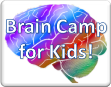 BrainCamp_icon